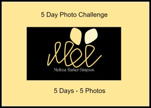 5 day photo challenge